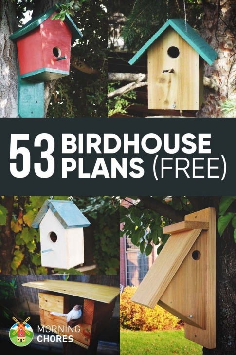 Awesome 53 Free Diy Bird House & Bird Feeder Plans That Will Attract Them To Bird House Plans Photo