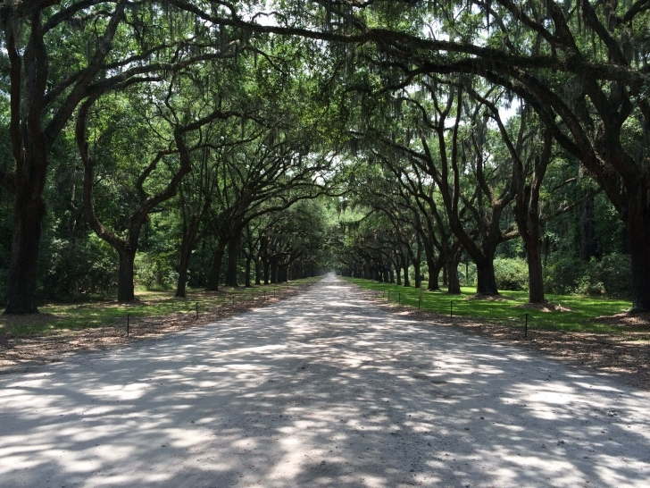 Awesome Sights To See: Wormsloe Historic Site - Savannah, Ga | Savannah Wormsloe Plantation House Pic