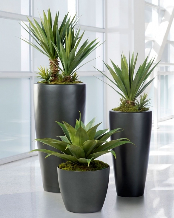 Best Awesome Silk House Plants Broad Leaf Agaveartificial Succulent Plant Silk House Plants Photo