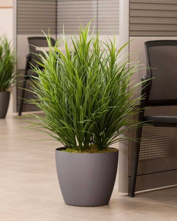 Best Buy Artificial Grass Floor Plant At Petals Fake House Plants Photo