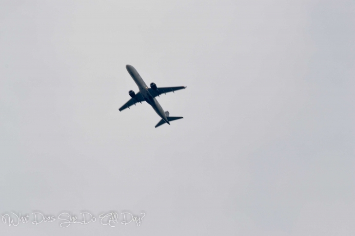 Best Case Of The Mondays - What Does She Do All Day? Military Planes Flying Over My House Pic