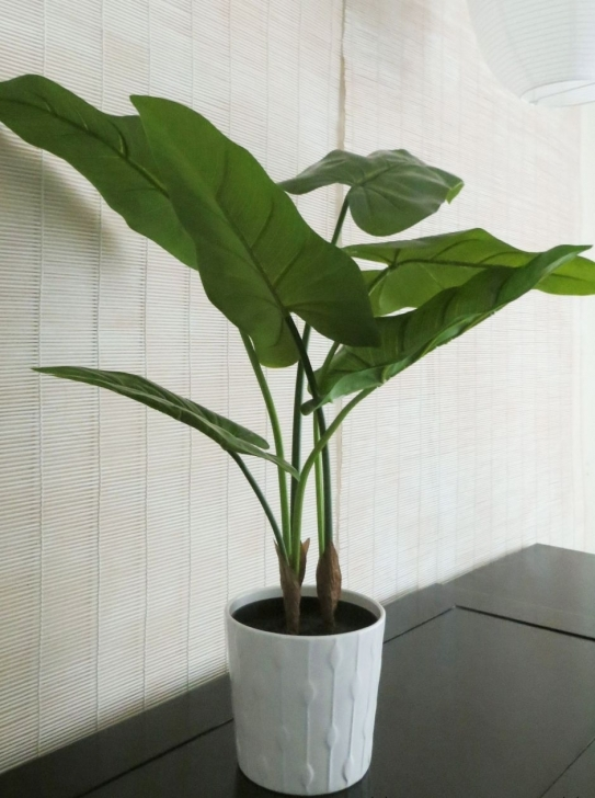 Best Faking It 7 Tips For Decorating With Artificial Plants & Flowers Fake House Plants Image
