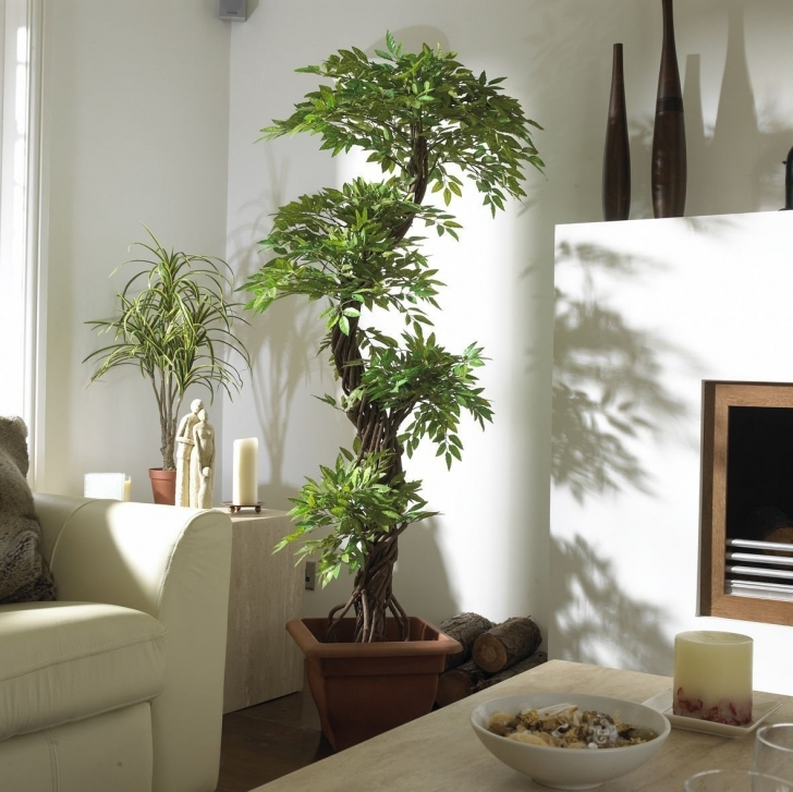 Classy Elegant Interior Dramatic Tall House Plants In Tall Houseplants As Fake House Plants Photo