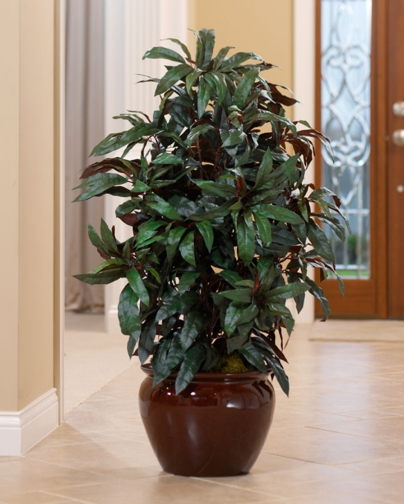 Cool Artificial Mango Floor Plant For Home Decorating At Petals Silk House Plants Pic
