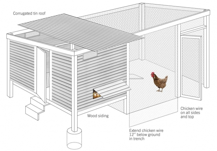 Cool How To Build A Chicken Coop - Modern Farmer Chicken Coop House Plans Photo