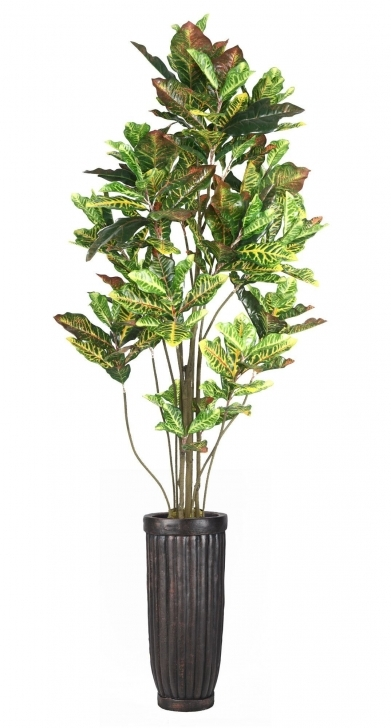 Fascinating Awesome Silk House Plants Laura Ashley Home Croton Tree In Planter Silk House Plants Image
