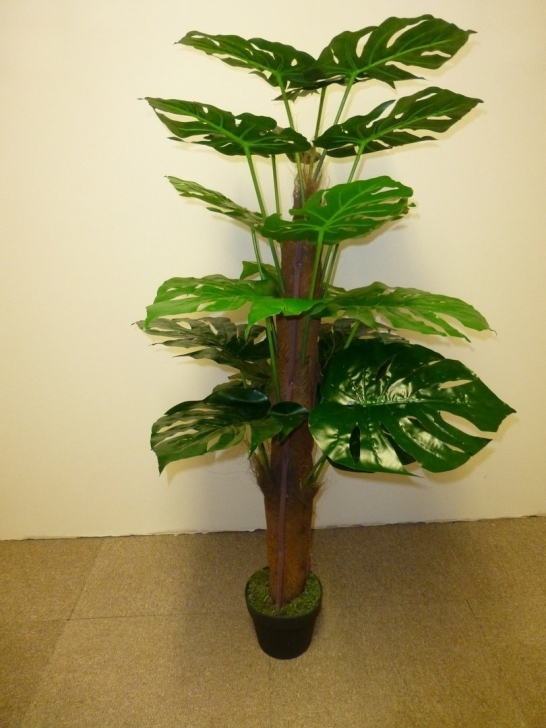 Good Artificial Plants - 4Ft 5Ft Artificial Cheese Plant - Indoor Office Artificial House Plants Pic