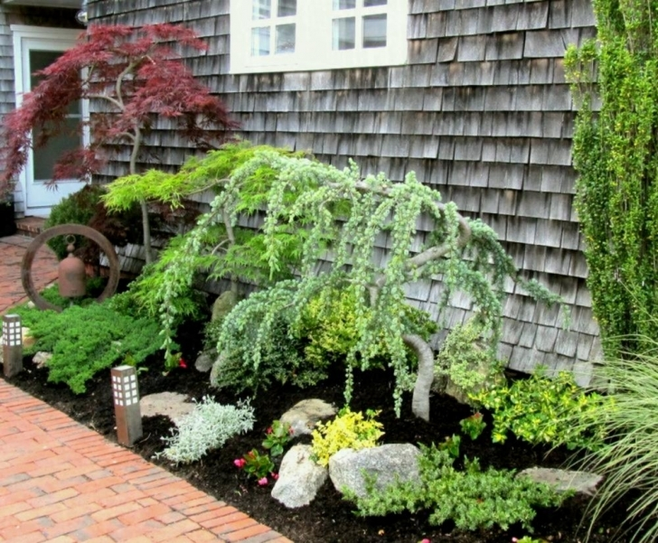 Good Creative Trees To Plant Near House Ornamental Is Too Close Planting Small Trees To Plant Near House Image