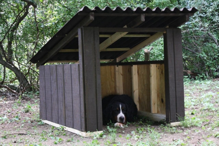 Gorgeous How To Build A Modern Dog House | How-Tos | Diy Simple Dog House Plans Picture