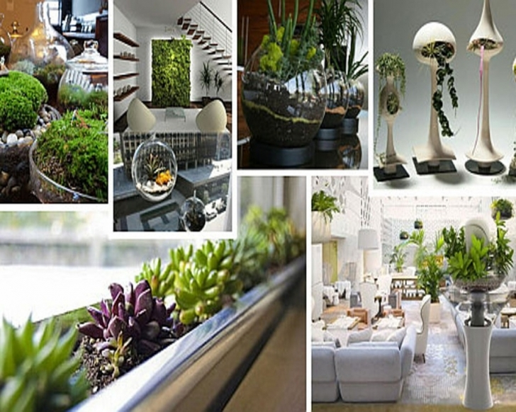 Inspirational Interior Decorating Style House Plants House Interior Regarding Inside House Plants Image