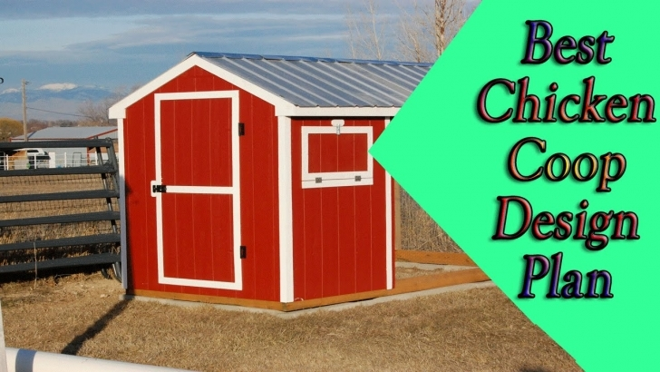 Inspiring How To Build Hen House? - Chicken Coop Plans For 12 Chickens - Youtube Hen House Plans Picture