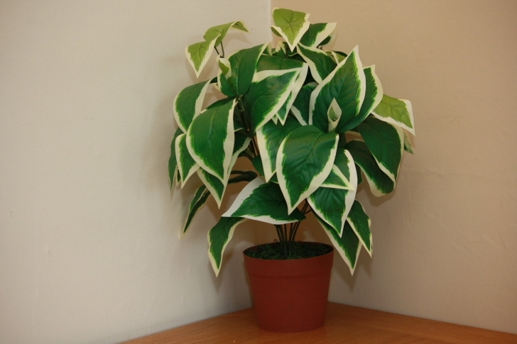 Interesting Uk-Gardens Large Artificial Scindapsus Plant Green Foliage Office Or Artificial House Plants Picture