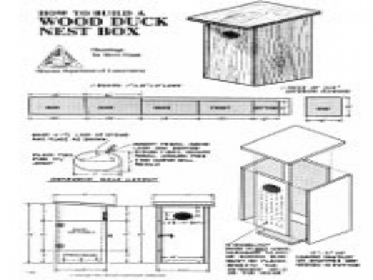 Latest How To Build A Duck House Plans Best Of Wood Duck House Plans 36 Duck House Plans Pic