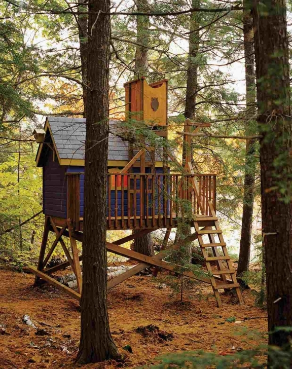 Picture of 11 Free Diy Tree House Plans Tree House Plans Picture