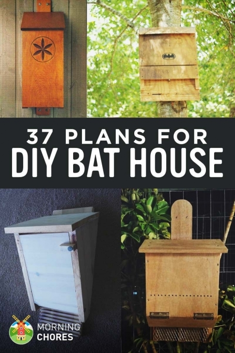 Picture of 37 Free Diy Bat House Plans That Will Attract The Natural Pest Bat House Plans Image