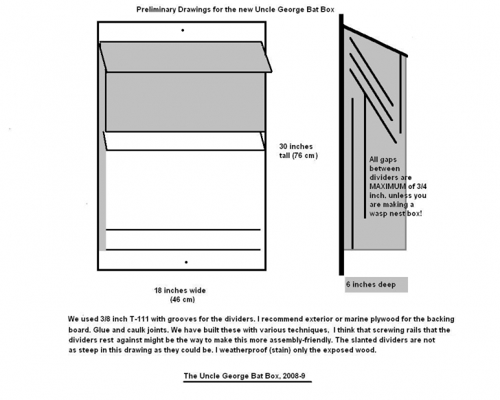 Picture of Bats Northwest Bat House Plans Image