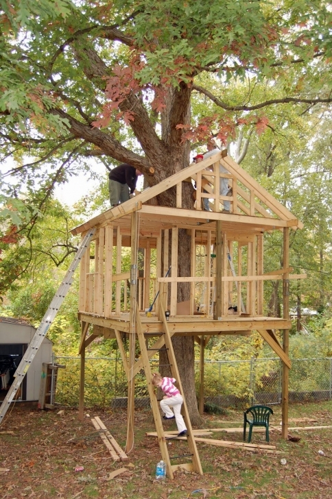 Popular 25+ ] Treehouse Design Ideas That Are Nice Than Your House | Outside Tree House Building Plans Image