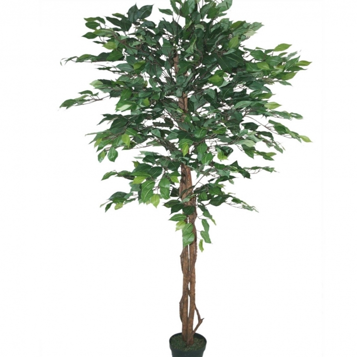 Fascinating Silk Bamboo Tree In Planter Beautiful Artificial Replica Fice House Silk House Plants Image