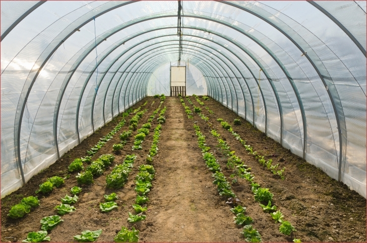 Outstanding Pvc Hoop House Plans Good Hoop House Plans Free The Best You Ll Find Hoop House Plans Photo